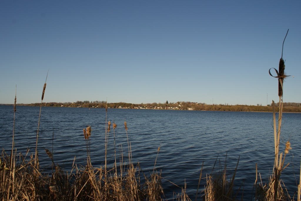 rich nutrients pose a challenge for Lake Scugog